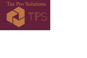 Tax Pro Solutions, Inc. Company Logo by Tax Pro Solutions, Inc. in Aldie VA