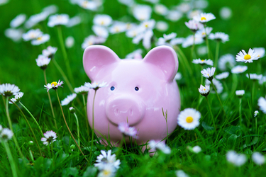 Learning Exciting Ways To Spring Clean Your Finances